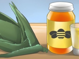 Aloe Arborescens and Honey Booster