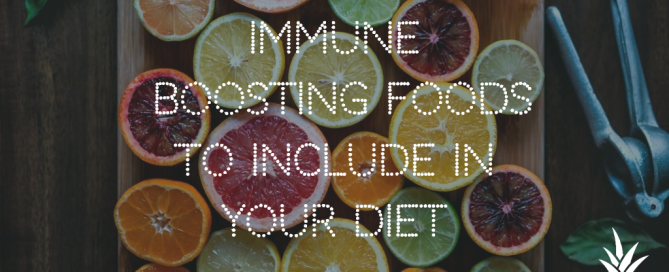 immune boosting food