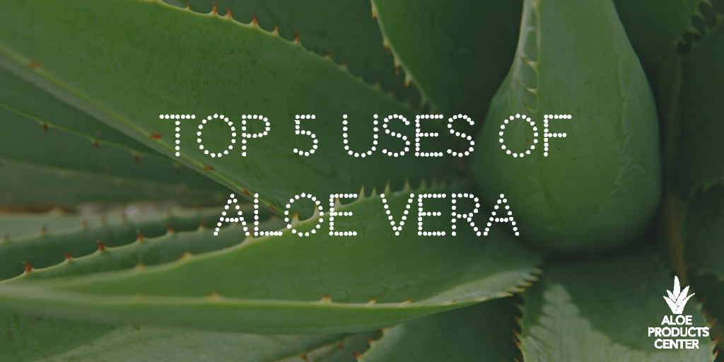 what is aloe vera good for